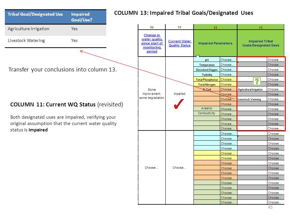 COLUMN 13: Impaired Tribal Goals/Designated Uses Tribal Goal/Designated UseImpaired Goal/Use.