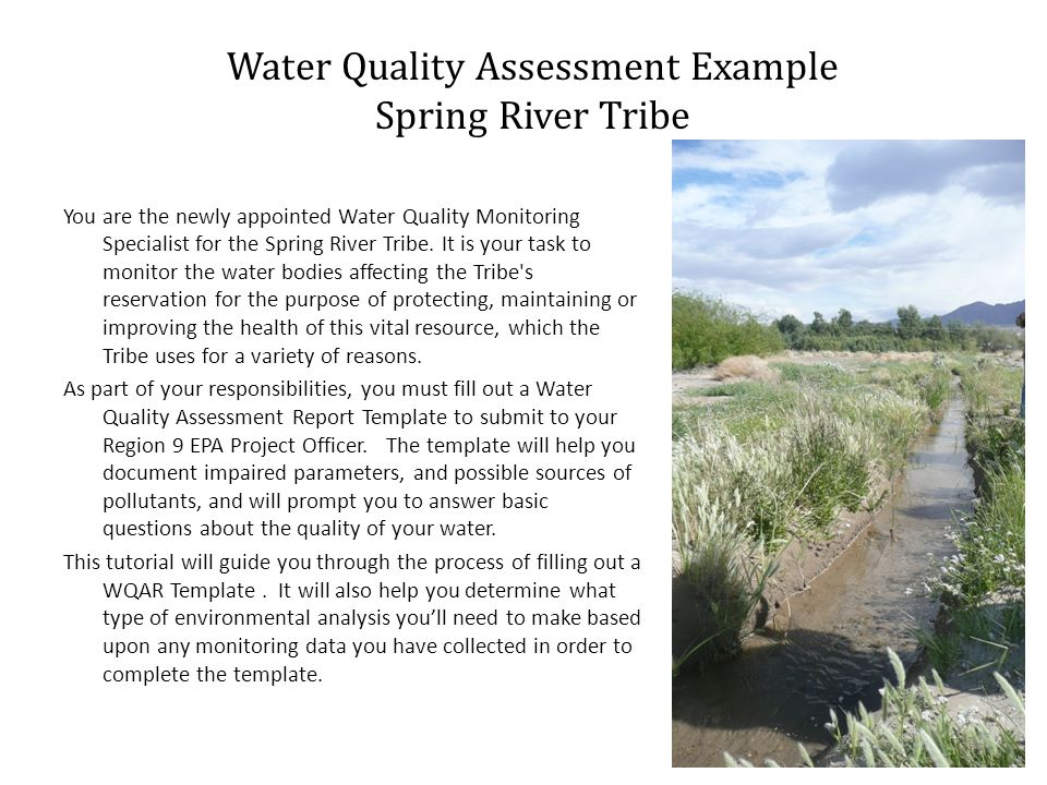 You are the newly appointed Water Quality Monitoring Specialist for the Spring River Tribe.