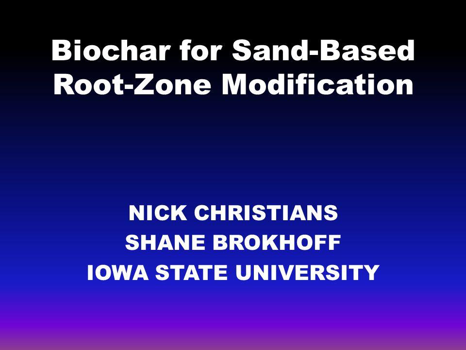 BIOCHAR AND TURF Sand-based turfgrass root-zone United States Golf Association (USGA)