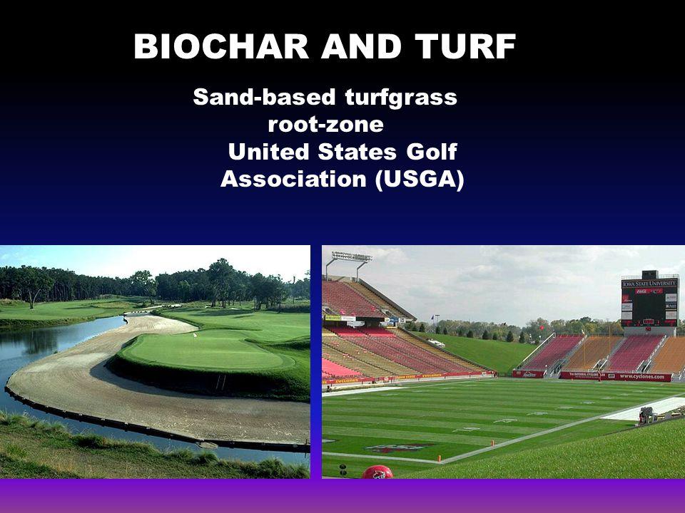 Why biochar and turf… 4 Root-zone mix Intermediate layer Coarse gravel Drainage tile (USGA, 1993) sand:peat moss 90:10 or 80:20
