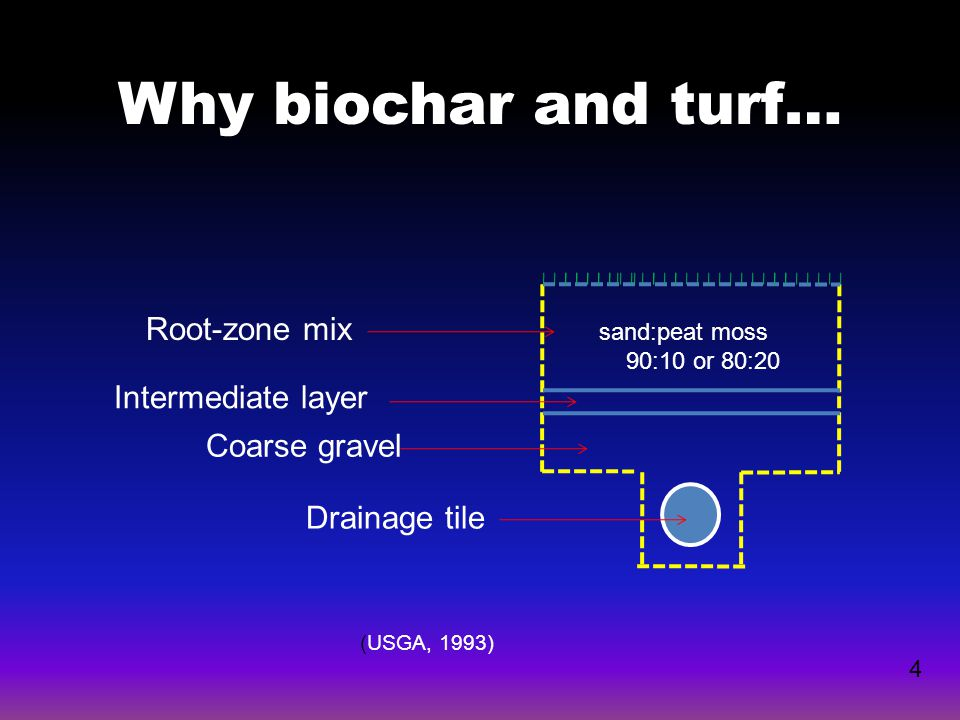 Why biochar and turf… 4 Root-zone mix Intermediate layer Coarse gravel Drainage tile (USGA, 1993) sand:peat moss 90:10 or 80:20