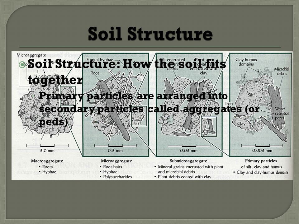 Soil Structure: How the soil fits together Primary particles are arranged into secondary particles called aggregates (or peds)