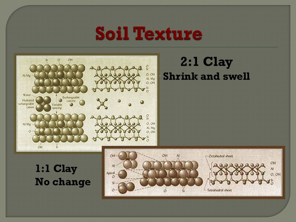 Shrink and Swell of Clay Interlayer space expands with increasing water content in soil Space contracts as water is removed Clay can crack when it shrinks