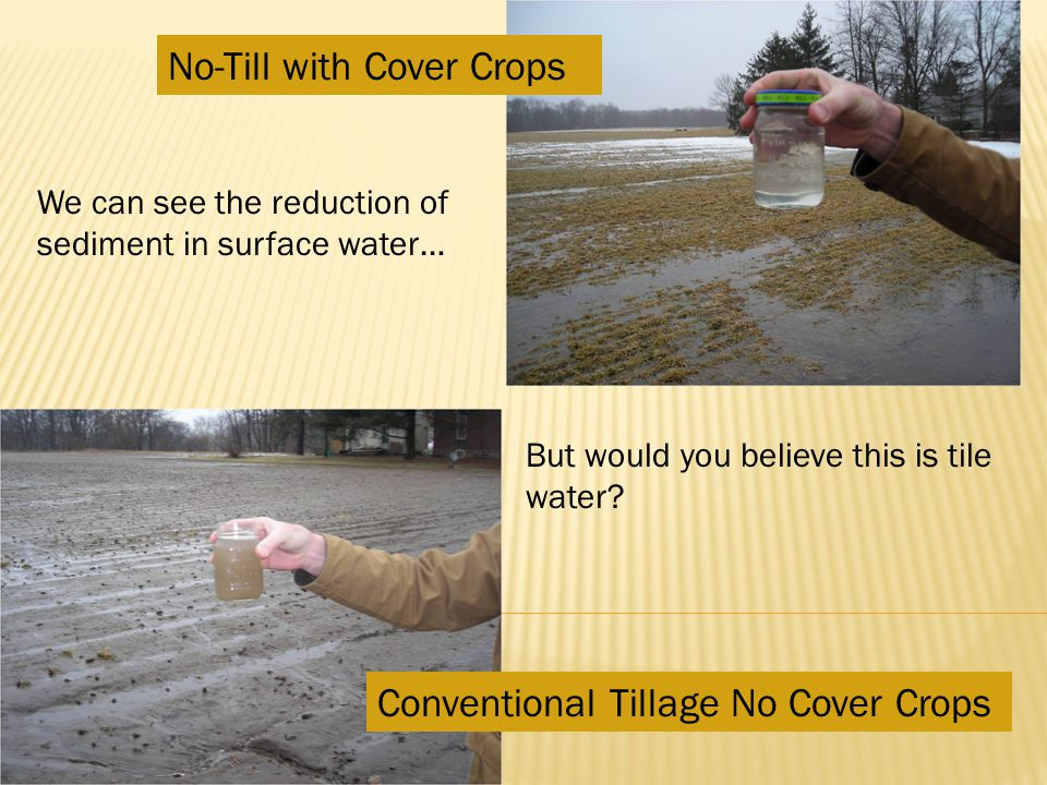 No-Till with Cover Crops Conventional Tillage No Cover Crops But would you believe this is tile water.