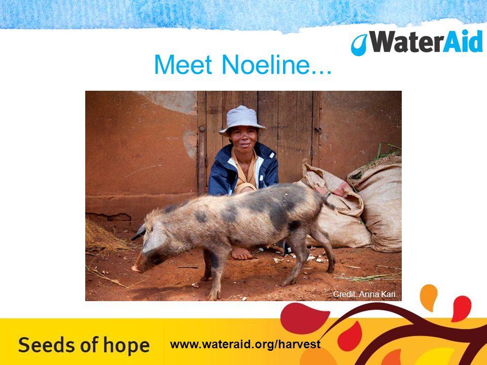 Meet Noeline... Credit: Anna Kari www.wateraid.org/harvest