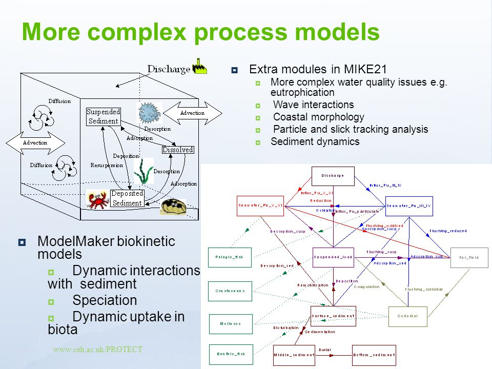 www.ceh.ac.uk/PROTECT Extra modules in MIKE21 More complex water quality issues e.g. eutrophication Wave interactions Coastal morphology Particle and