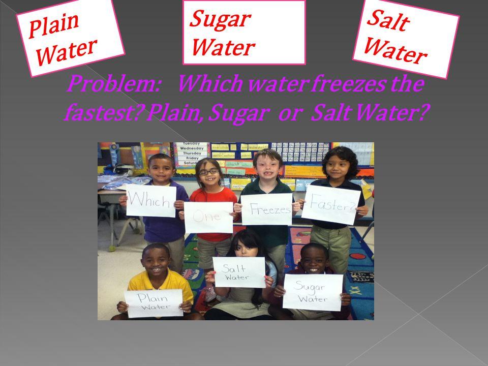 Plain Salt Sugar