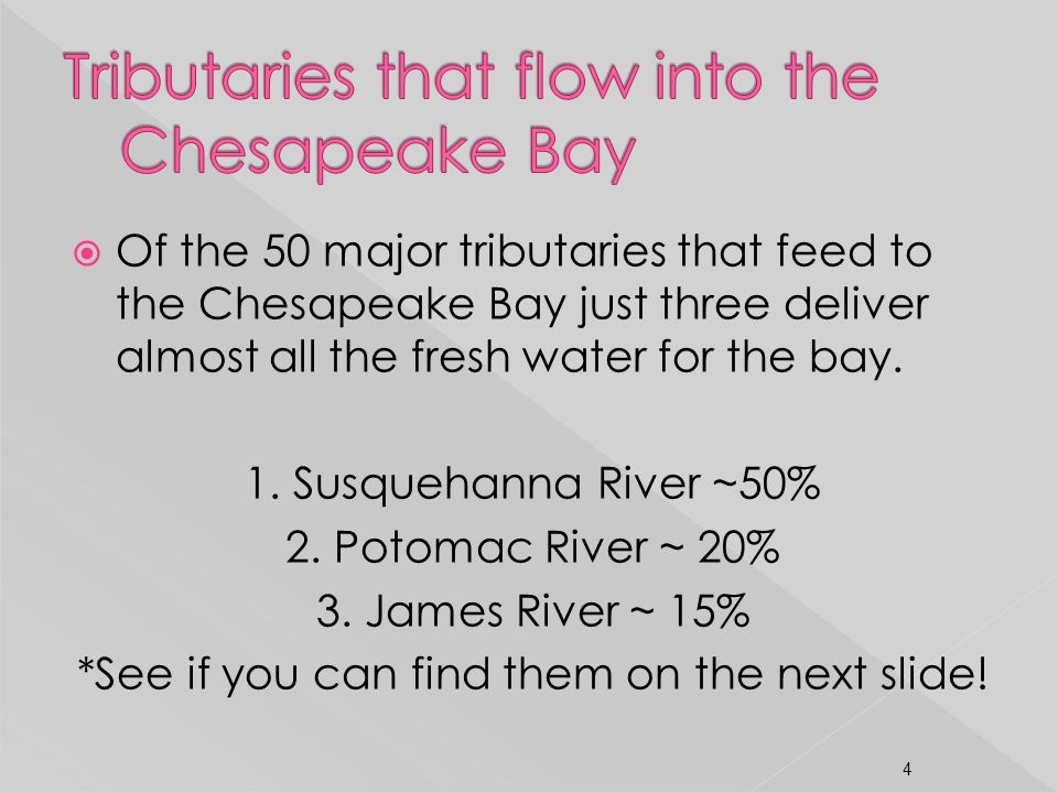 Of the 50 major tributaries that feed to the Chesapeake Bay just three deliver almost all the fresh water for the bay. 1. Susquehanna River ~50% 2. Po