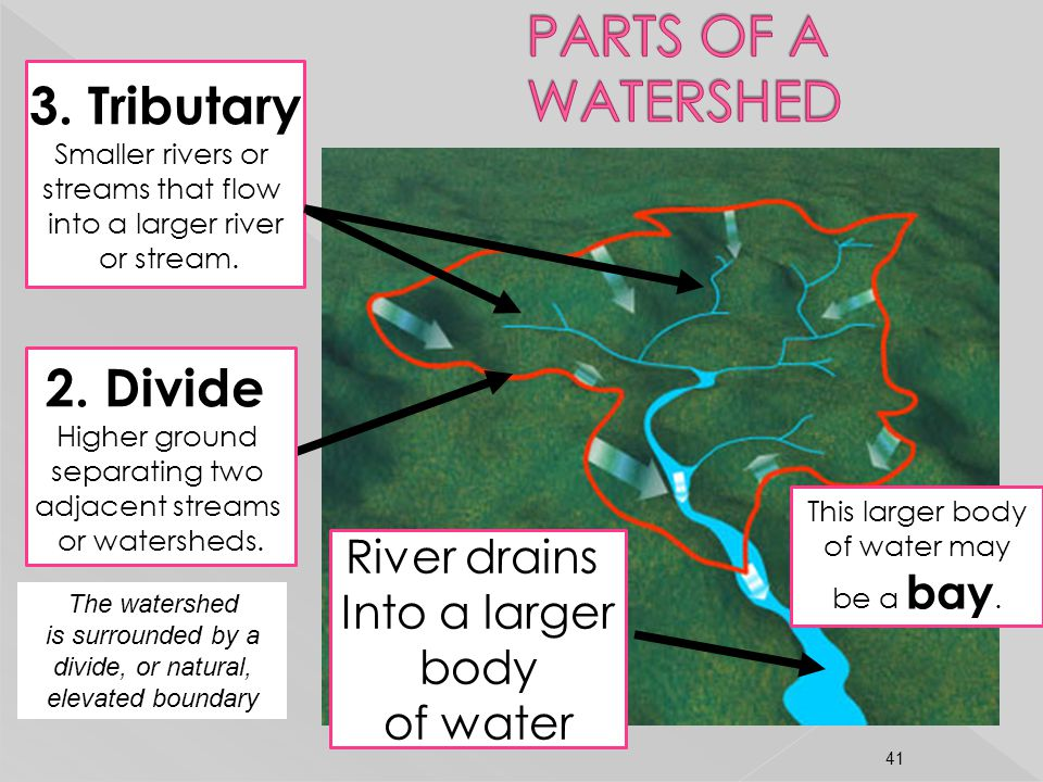 2. Divide Higher ground separating two adjacent streams or watersheds. 3. Tributary Smaller rivers or streams that flow into a larger river or stream.