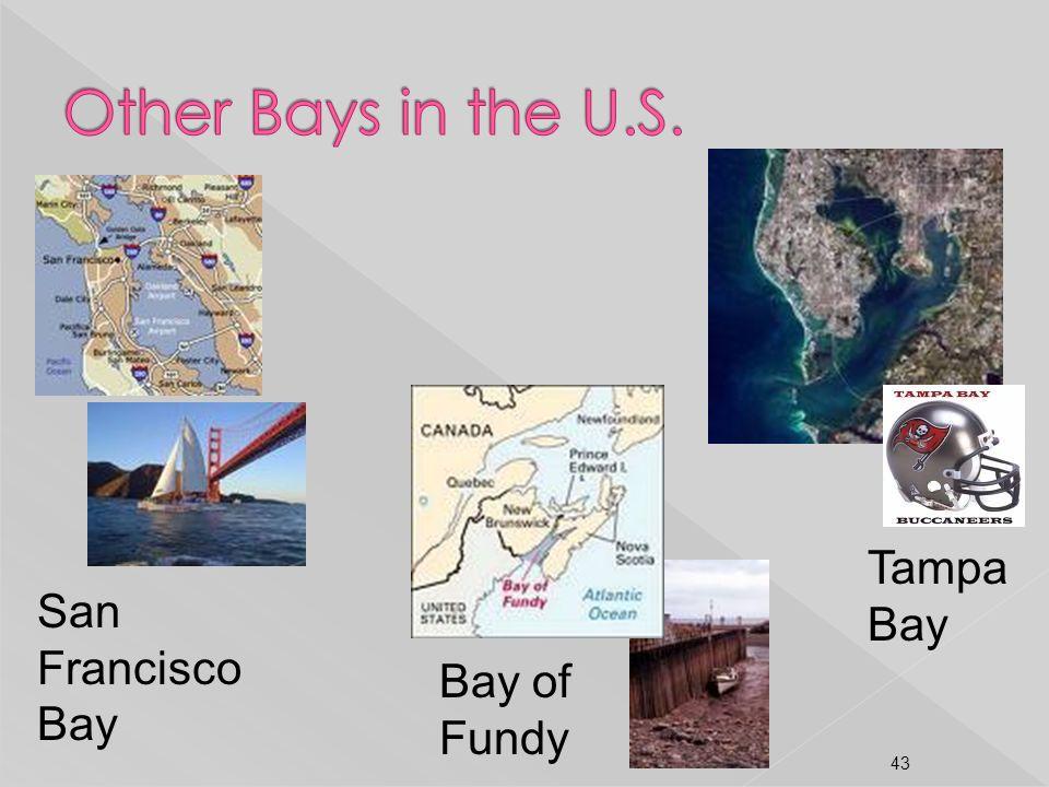 San Francisco Bay Bay of Fundy Tampa Bay 43