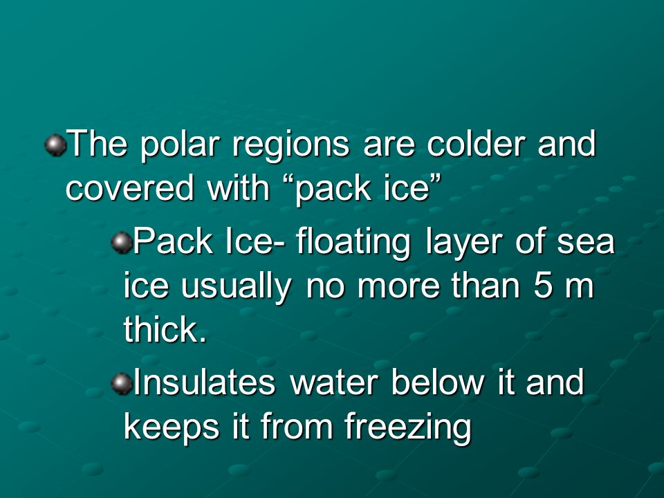 The polar regions are colder and covered with pack ice Pack Ice- floating layer of sea ice usually no more than 5 m thick. Insulates water below it an