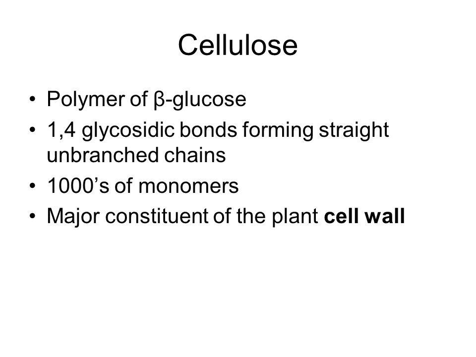 Cellulose Polymer of β-glucose 1,4 glycosidic bonds forming straight unbranched chains 1000s of monomers Major constituent of the plant cell wall
