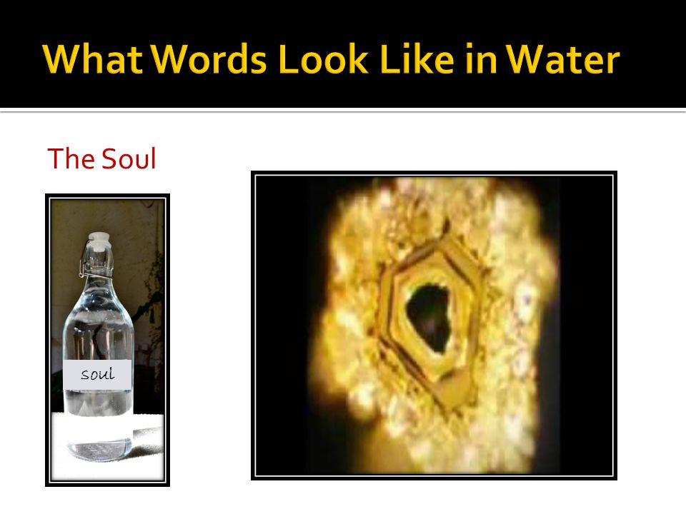 The Soul soul