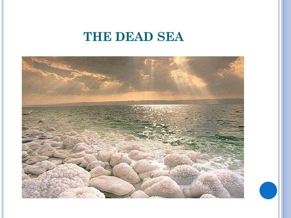 WHERE PEOPLE FLOAT LEISURELY DEAD SEA