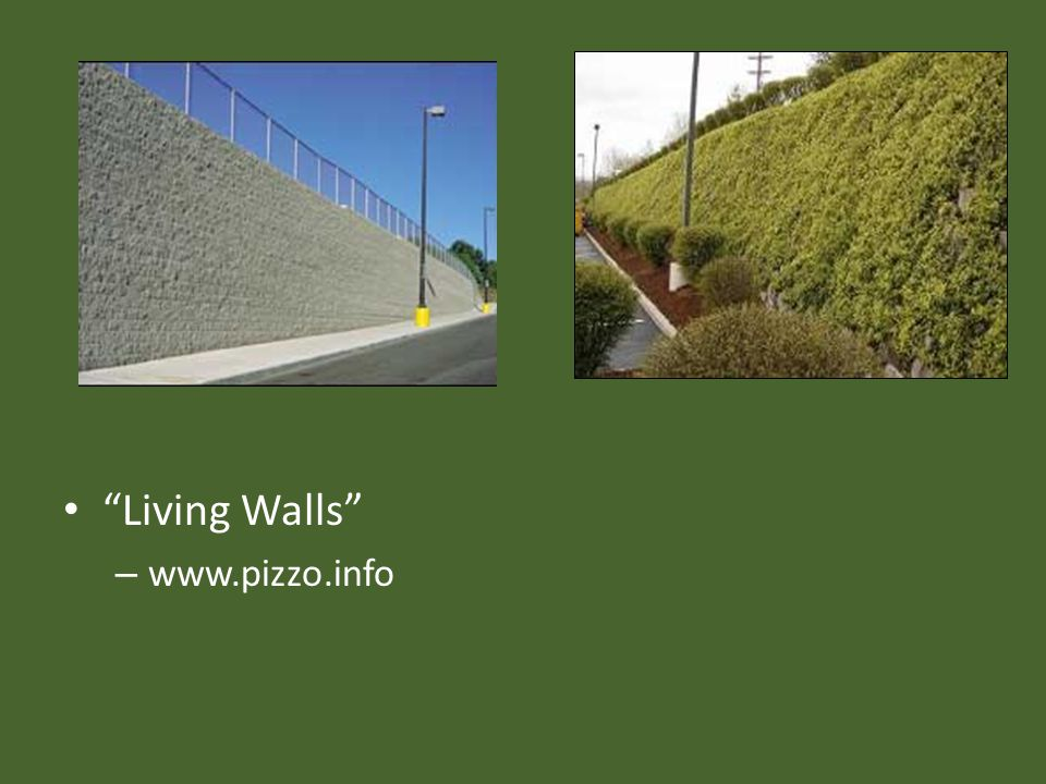 Living Walls – www.pizzo.info