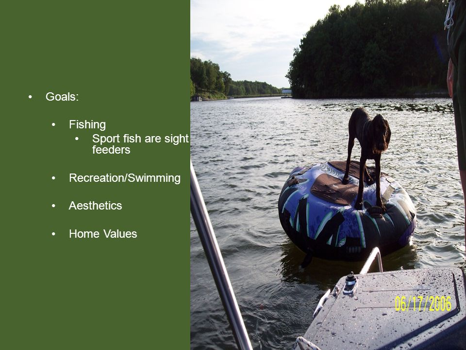 Goals: Fishing Sport fish are sight feeders Recreation/Swimming Aesthetics Home Values
