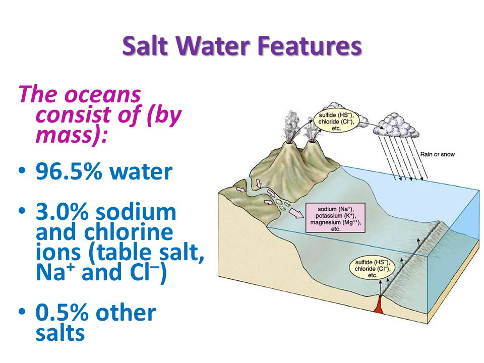 Salt Water Features The oceans consist of (by mass): 96.5% water 3.0% sodium and chlorine ions (table salt, Na + and Cl – ) 0.5% other salts
