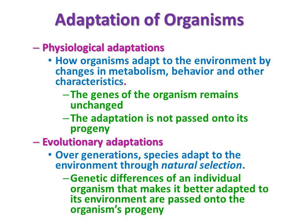 Adaptation of Organisms – Physiological adaptations How organisms adapt to the environment by changes in metabolism, behavior and other characteristics.