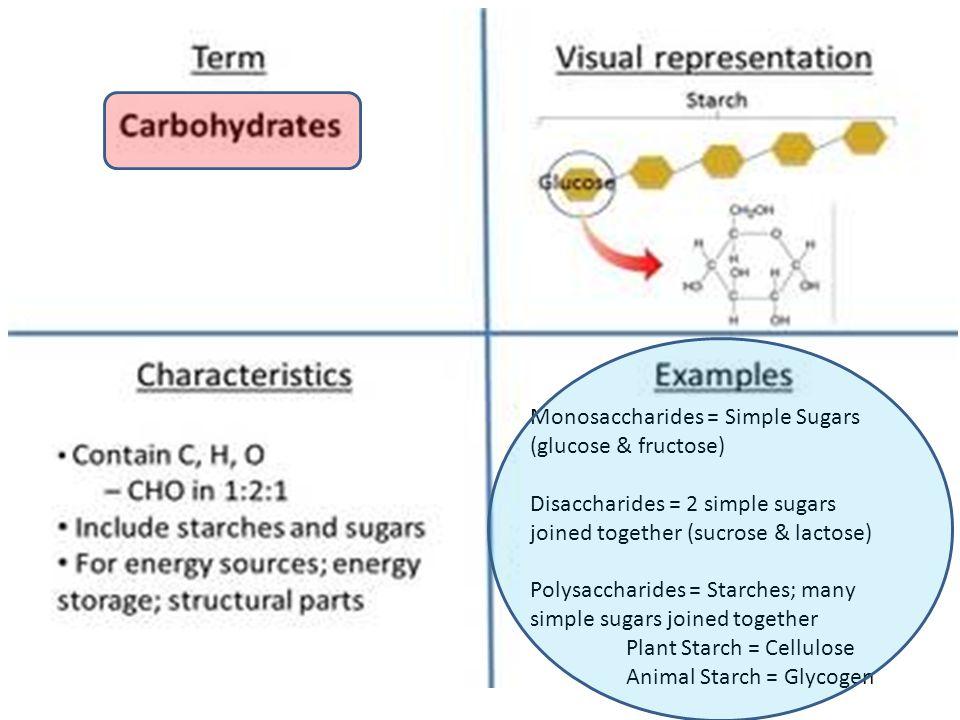 Monosaccharides = Simple Sugars (glucose & fructose) Disaccharides = 2 simple sugars joined together (sucrose & lactose) Polysaccharides = Starches; many simple sugars joined together Plant Starch = Cellulose Animal Starch = Glycogen