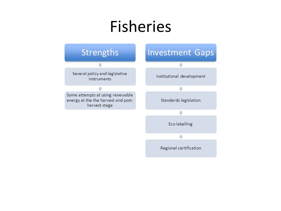 Fisheries Strengths Several policy and legislative instruments Some attempts at using renewable energy at the the harvest and post- harvest stage Investment Gaps Institutional developmentStandards legislationEco labellingRegional certification