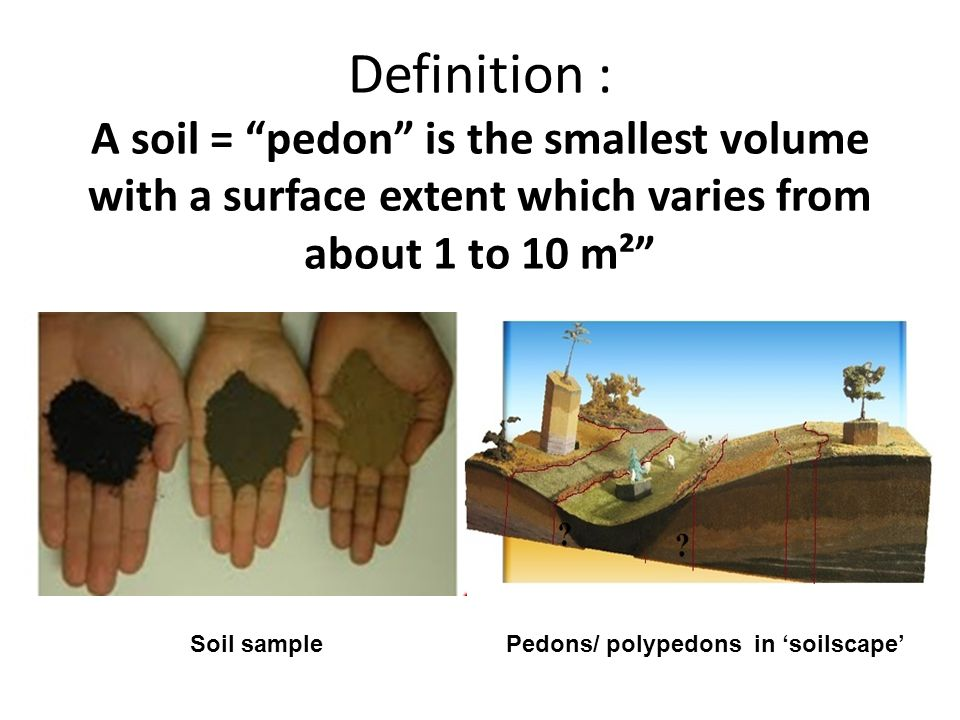 Definition : A soil = pedon is the smallest volume with a surface extent which varies from about 1 to 10 m² Soil samplePedons/ polypedons in soilscape