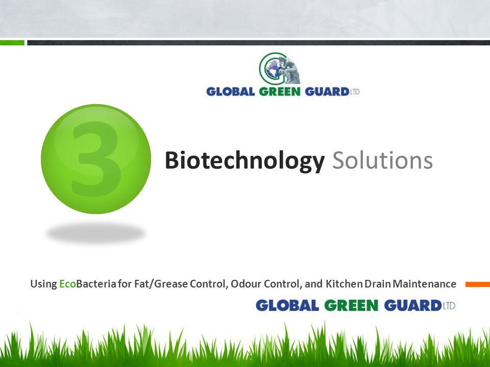 3 Biotechnology Solutions Using EcoBacteria for Fat/Grease Control, Odour Control, and Kitchen Drain Maintenance