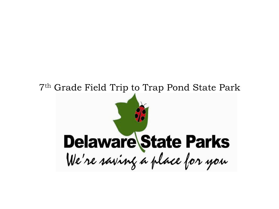 Trap Pond State Park & The Chesapeake Bay Watershed