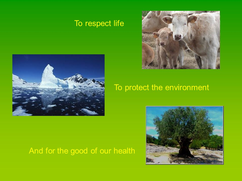 To respect life To protect the environment And for the good of our health