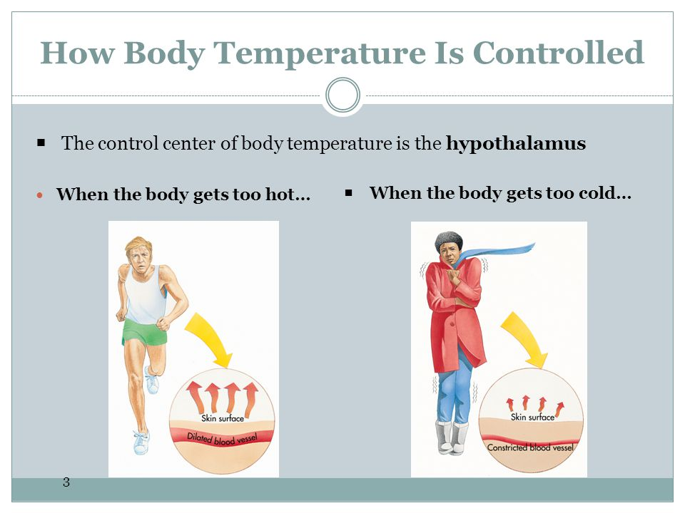 14 Heat Exhaustion The signals of heat exhaustion include Cool, moist, pale, ashen or flushed skin.