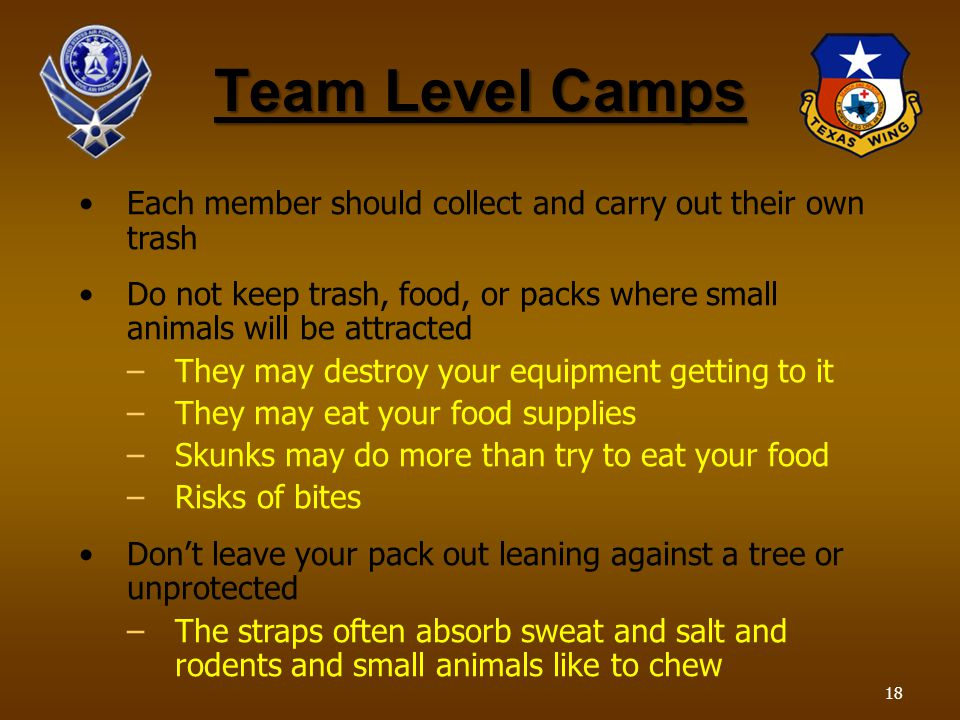 Team Level Camps Each member should collect and carry out their own trash Do not keep trash, food, or packs where small animals will be attracted –They may destroy your equipment getting to it –They may eat your food supplies –Skunks may do more than try to eat your food –Risks of bites Dont leave your pack out leaning against a tree or unprotected –The straps often absorb sweat and salt and rodents and small animals like to chew 18