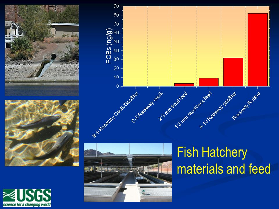 Fish Hatchery materials and feed
