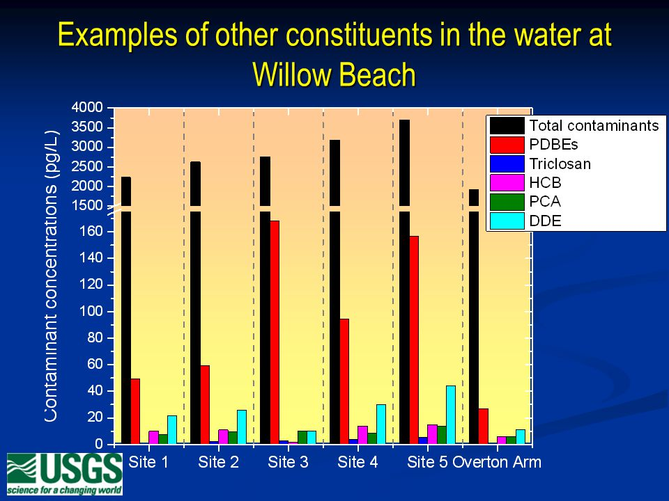Examples of other constituents in the water at Willow Beach