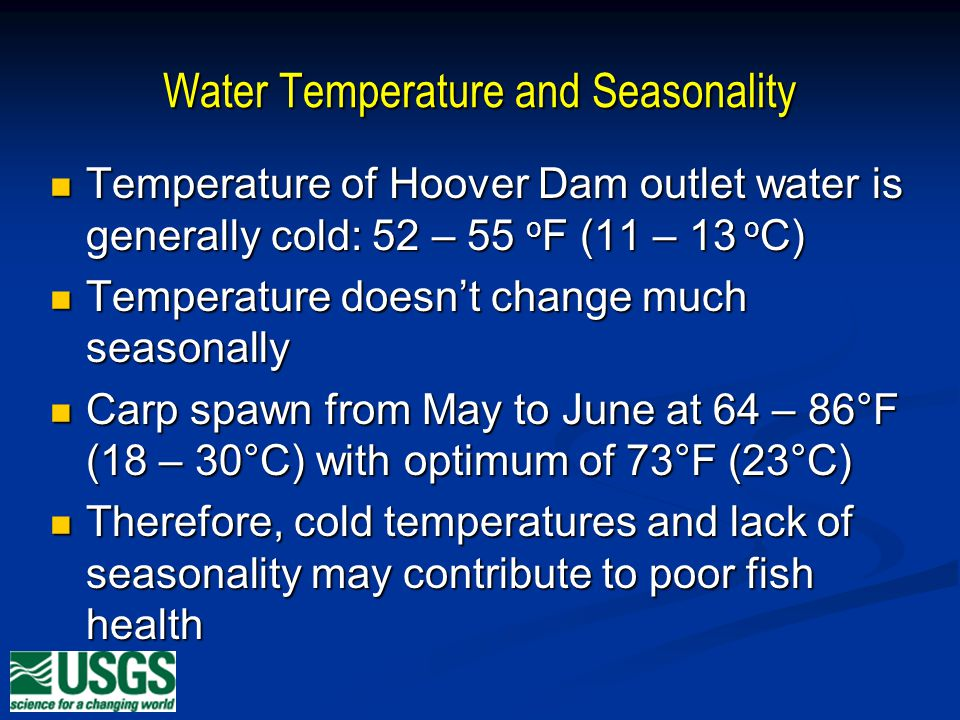 Water Temperature and Seasonality Temperature of Hoover Dam outlet water is generally cold: 52 – 55 o F (11 – 13 o C) Temperature of Hoover Dam outlet water is generally cold: 52 – 55 o F (11 – 13 o C) Temperature doesnt change much seasonally Temperature doesnt change much seasonally Carp spawn from May to June at 64 – 86°F (18 – 30°C) with optimum of 73°F (23°C) Carp spawn from May to June at 64 – 86°F (18 – 30°C) with optimum of 73°F (23°C) Therefore, cold temperatures and lack of seasonality may contribute to poor fish health Therefore, cold temperatures and lack of seasonality may contribute to poor fish health