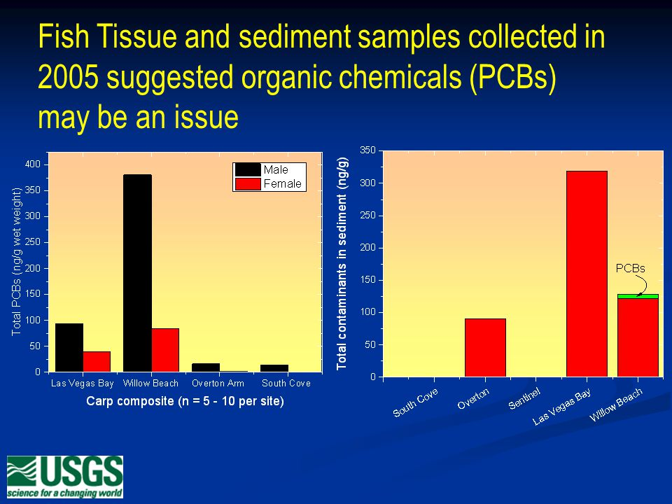 Fish Tissue and sediment samples collected in 2005 suggested organic chemicals (PCBs) may be an issue