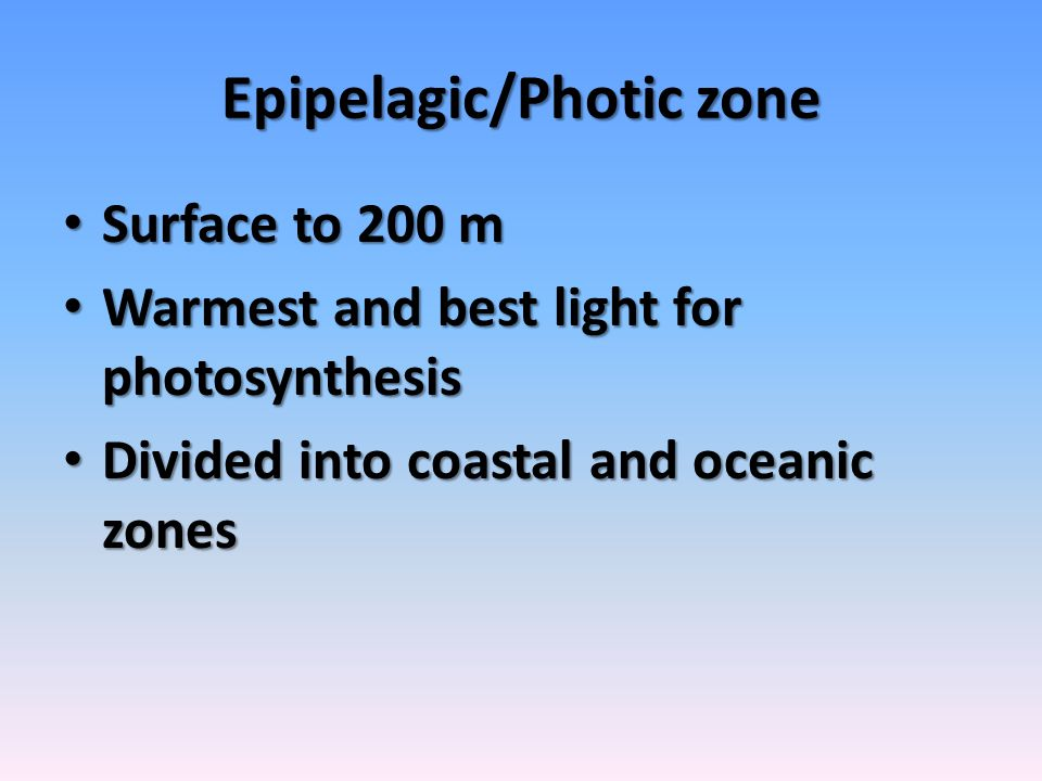 Epipelagic/Photic zone Surface to 200 m Surface to 200 m Warmest and best light for photosynthesis Warmest and best light for photosynthesis Divided i
