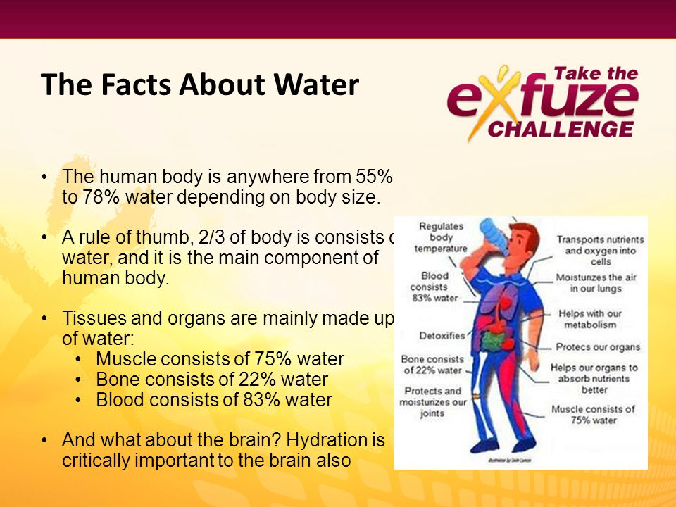 The Facts About Water The human body is anywhere from 55% to 78% water depending on body size. A rule of thumb, 2/3 of body is consists of water, and