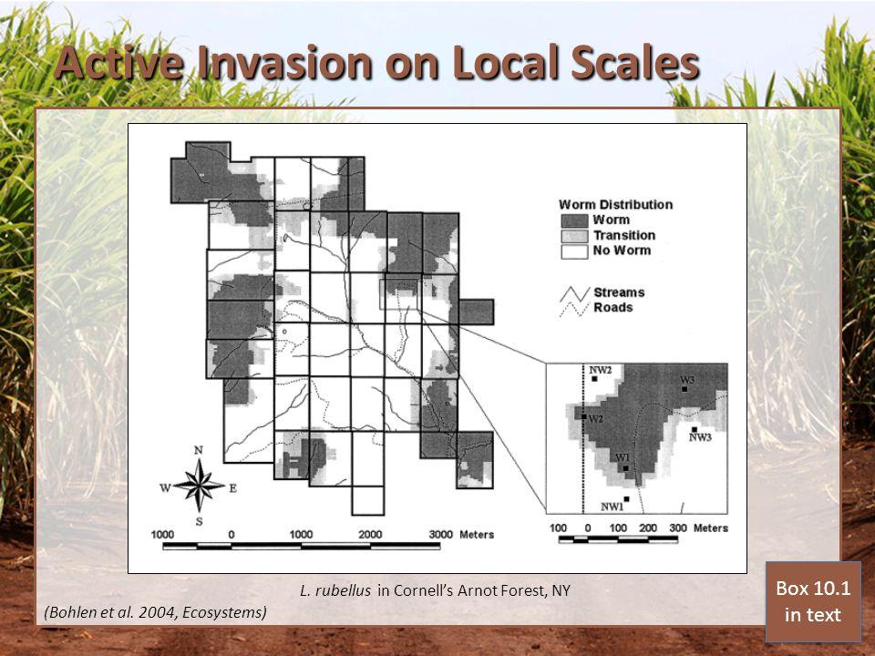 Active Invasion on Local Scales (Bohlen et al. 2004, Ecosystems) L.