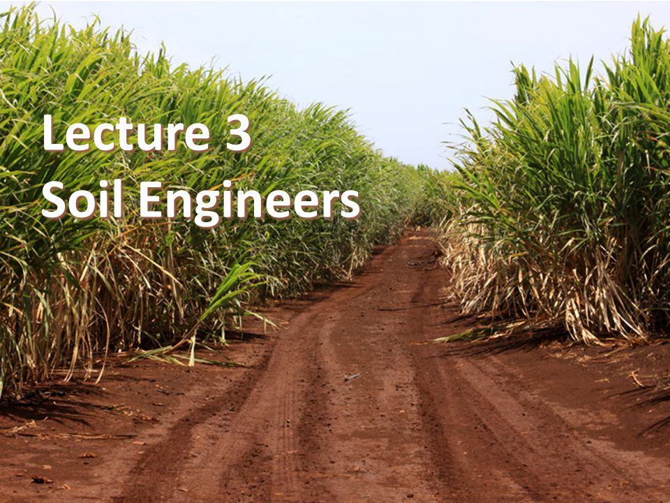 Lecture 3 Soil Engineers