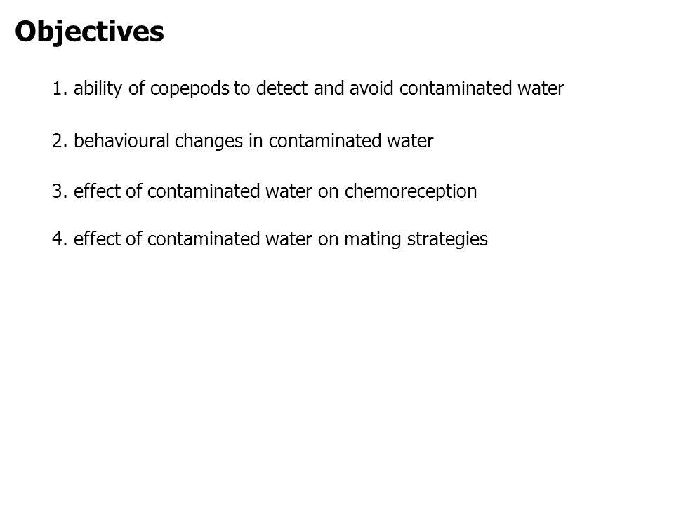 Objectives 1. ability of copepods to detect and avoid contaminated water 2.