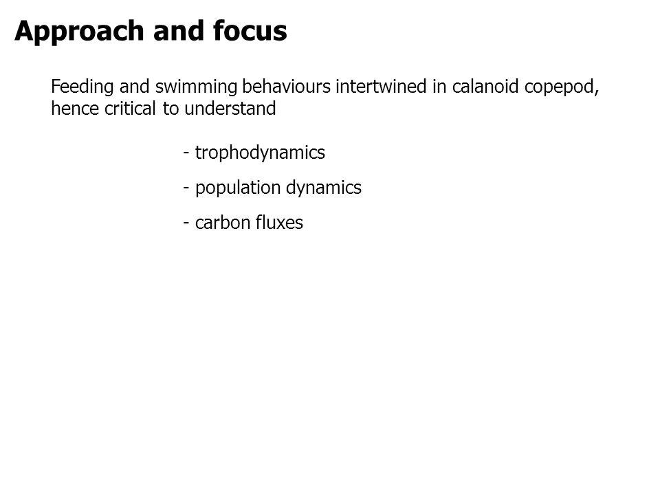 Objectives 1.ability of copepods to detect and avoid contaminated water 2.
