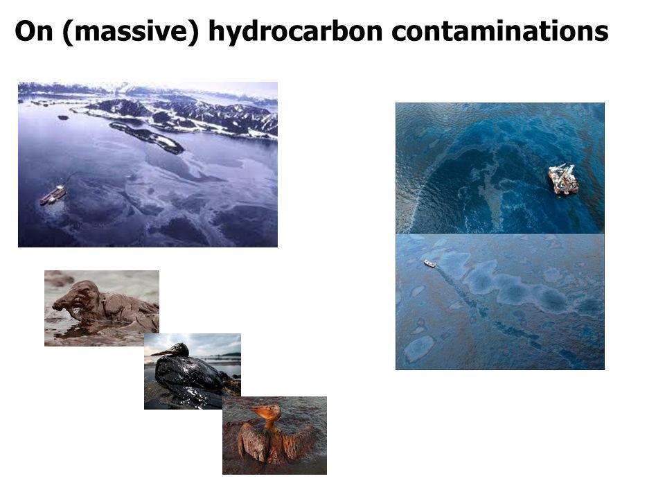 On (pernicious) hydrocarbon contaminations Oil leaked from a Nippon Petroleum Refining Co.