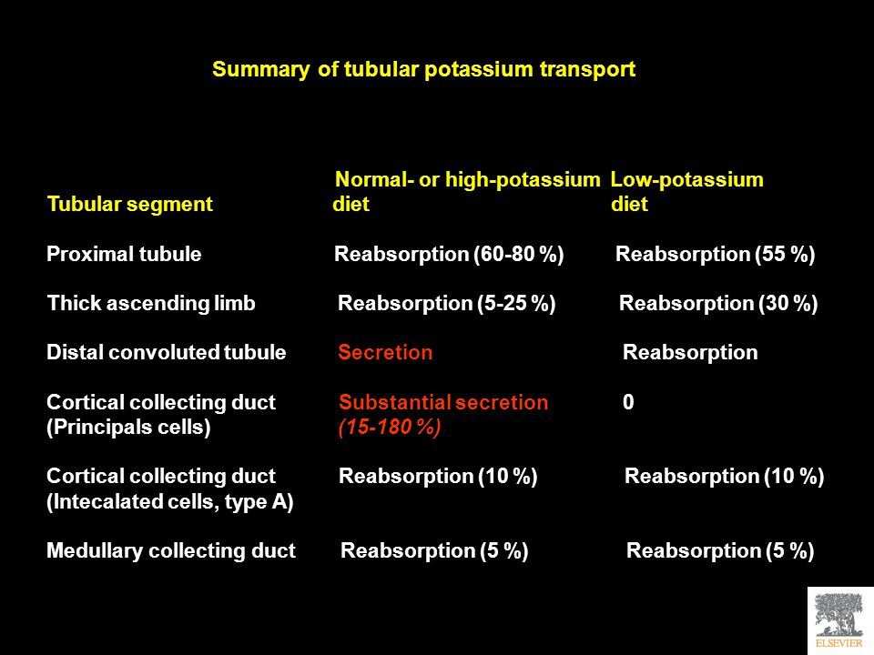 Summary of tubular potassium transport Normal- or high-potassium Low-potassium Tubular segment diet diet Proximal tubule Reabsorption (60-80 %) Reabsorption (55 %) Thick ascending limb Reabsorption (5-25 %) Reabsorption (30 %) Distal convoluted tubule Secretion Reabsorption Cortical collecting duct Substantial secretion 0 (Principals cells) (15-180 %) Cortical collecting duct Reabsorption (10 %) Reabsorption (10 %) (Intecalated cells, type A) Medullary collecting duct Reabsorption (5 %) Reabsorption (5 %)