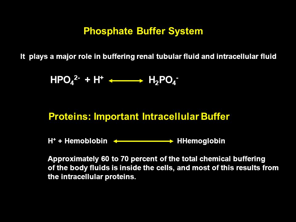 Phosphate Buffer System It plays a major role in buffering renal tubular fluid and intracellular fluid HPO 4 2- + H + H 2 PO 4 - Proteins: Important Intracellular Buffer H + + Hemoblobin HHemoglobin Approximately 60 to 70 percent of the total chemical buffering of the body fluids is inside the cells, and most of this results from the intracellular proteins.