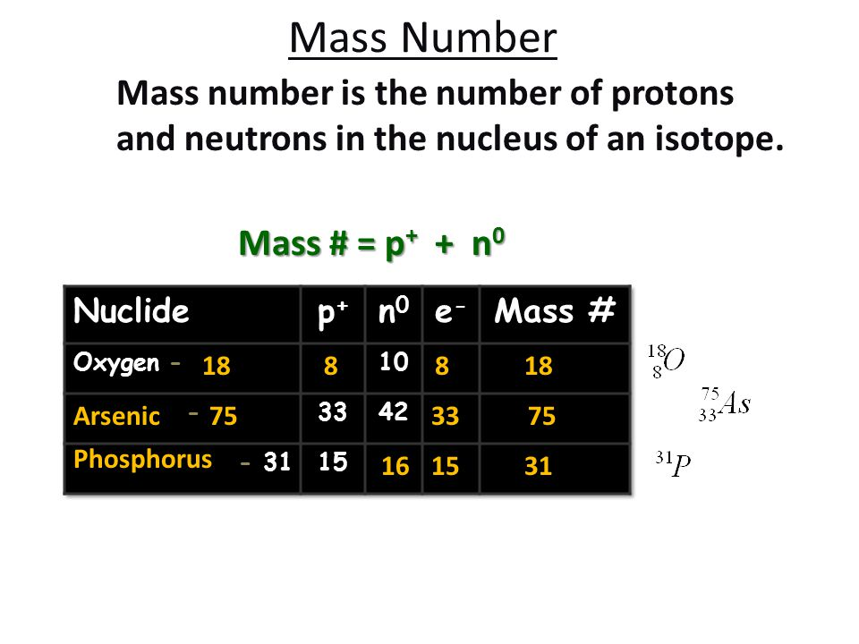 Mass Number Mass number is the number of protons and neutrons in the nucleus of an isotope. Mass # = p + + n 0 8818 Arsenic753375 Phosphorus 153116