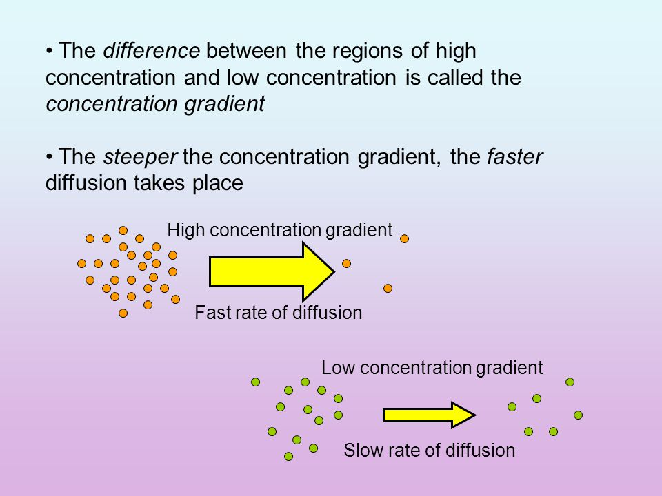Diffusion Particles in a liquid or gas spread out… … from regions of high concentration… … to regions of low concentration… …until the particles are evenly spread out.
