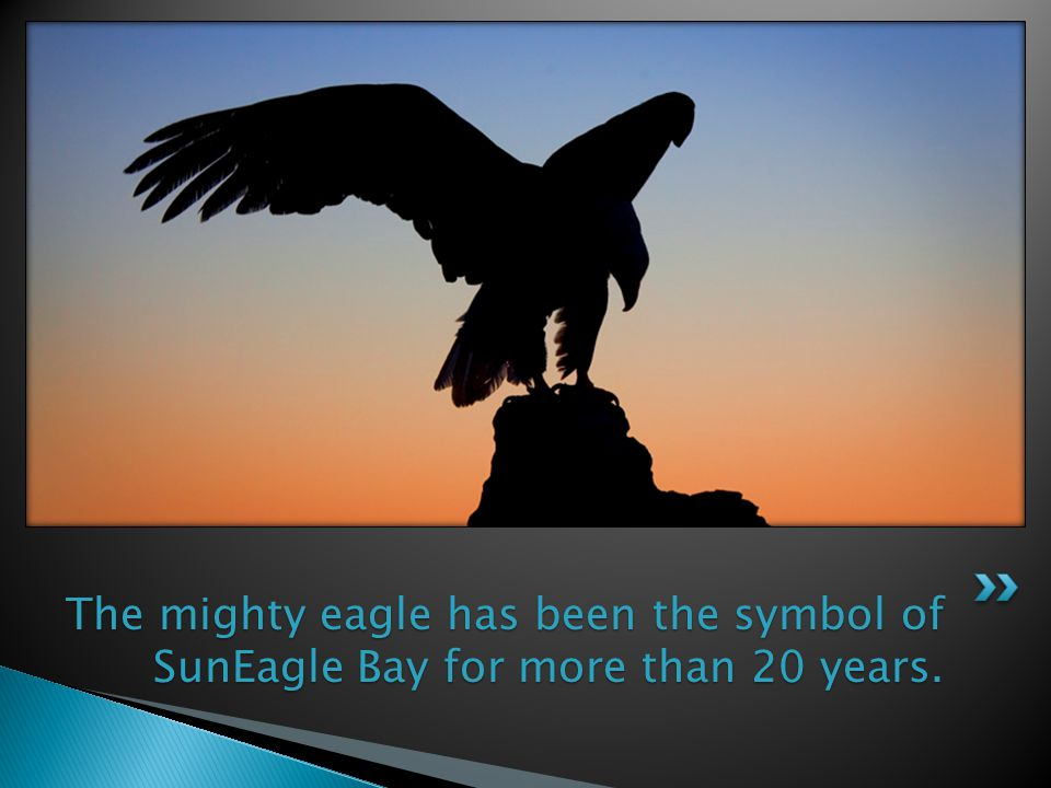The mighty eagle has been the symbol of SunEagle Bay for more than 20 years.