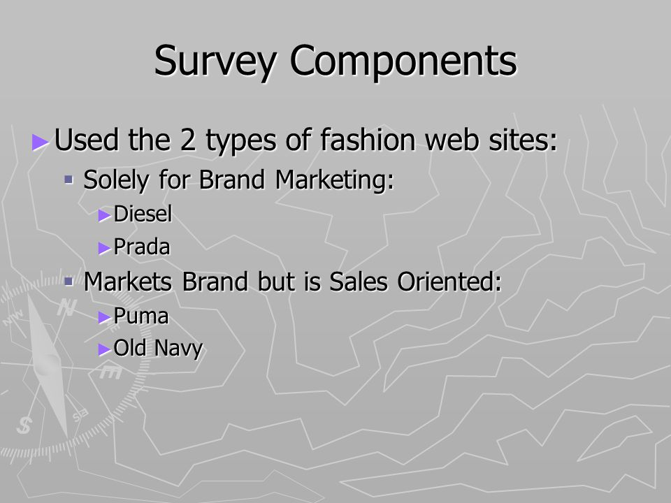 Survey Components Used the 2 types of fashion web sites: Used the 2 types of fashion web sites: Solely for Brand Marketing: Solely for Brand Marketing: Diesel Diesel Prada Prada Markets Brand but is Sales Oriented: Markets Brand but is Sales Oriented: Puma Puma Old Navy Old Navy