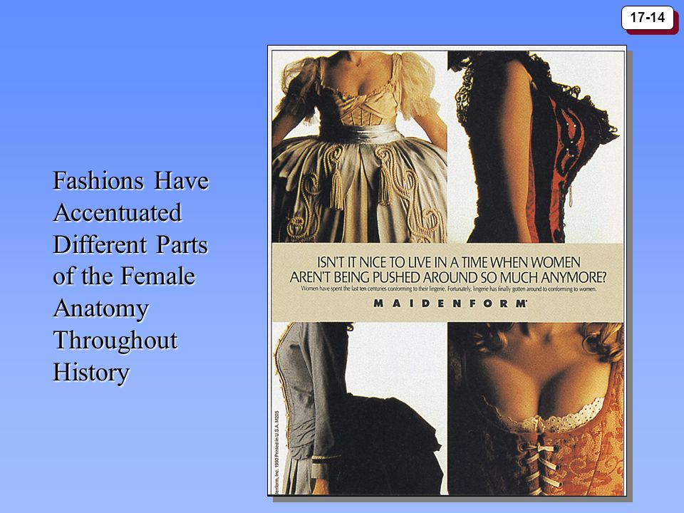 17-14 Fashions Have Accentuated Different Parts of the Female Anatomy Throughout History