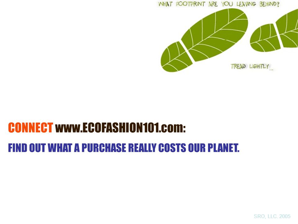 CONNECT www.ECOFASHION101.com: FIND OUT WHAT A PURCHASE REALLY COSTS OUR PLANET. SRO, LLC. 2005
