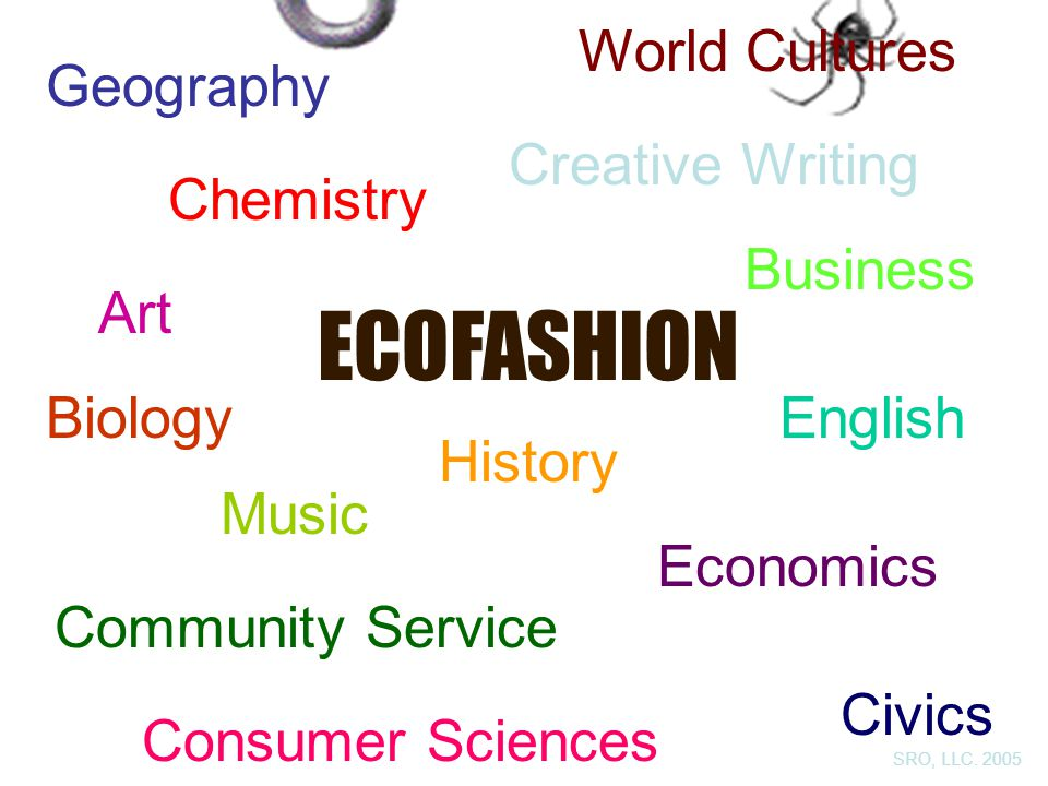 ECOFASHION Geography Chemistry Biology Civics Economics English Consumer Sciences World Cultures Community Service Business Art History Creative Writing Music SRO, LLC.